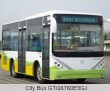 City Bus GTQ6760E3GJ