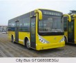 City Bus GTQ6800E3GJ