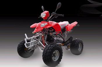 SK150 ATV Quads-3E