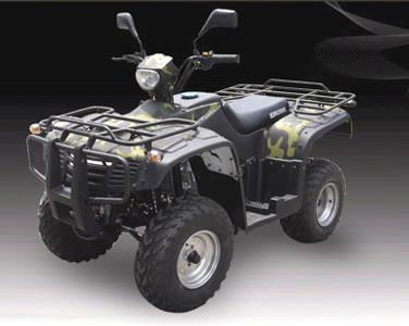 SK250 ATV Quads-2AE