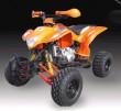 SK250 ATV Quads-1