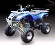 SK250 ATV Quads-2