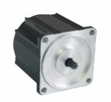 Brushless DC Motor 60ZWN