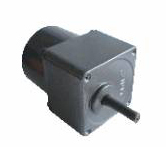 Synchronous Motor TY60-10/60JB