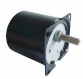 Synchronous Motor TY70