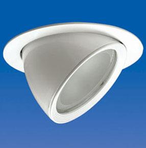 Built-in Halogen Lamp