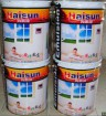 Exterior Wall Paint  W11