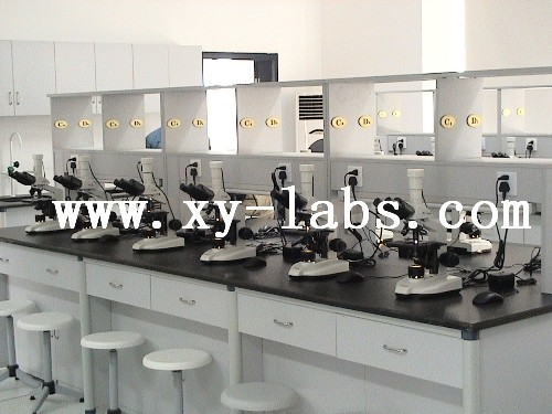 School Laboratory Countertops